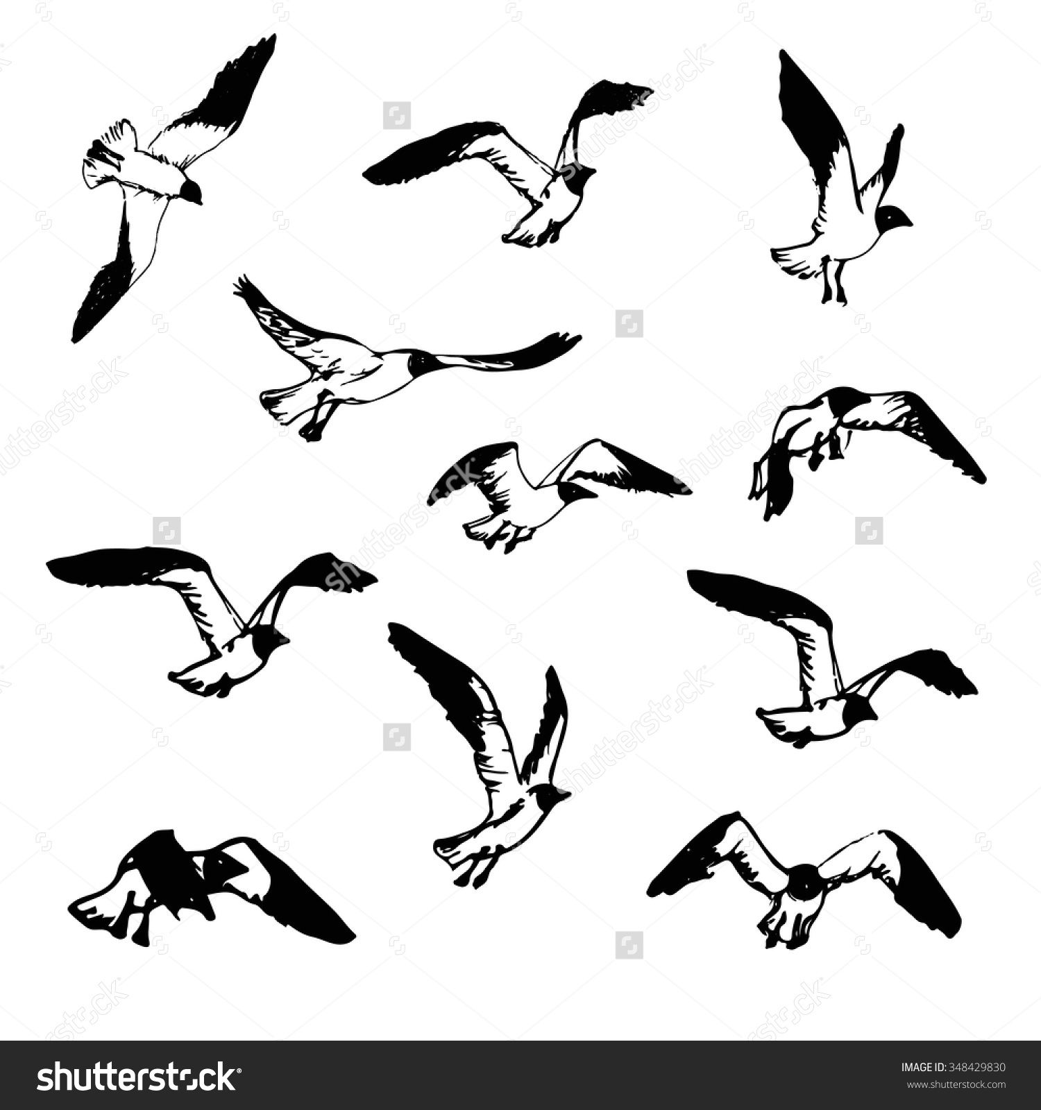 Hand Drawn Flying Seagulls Black And White Illustration