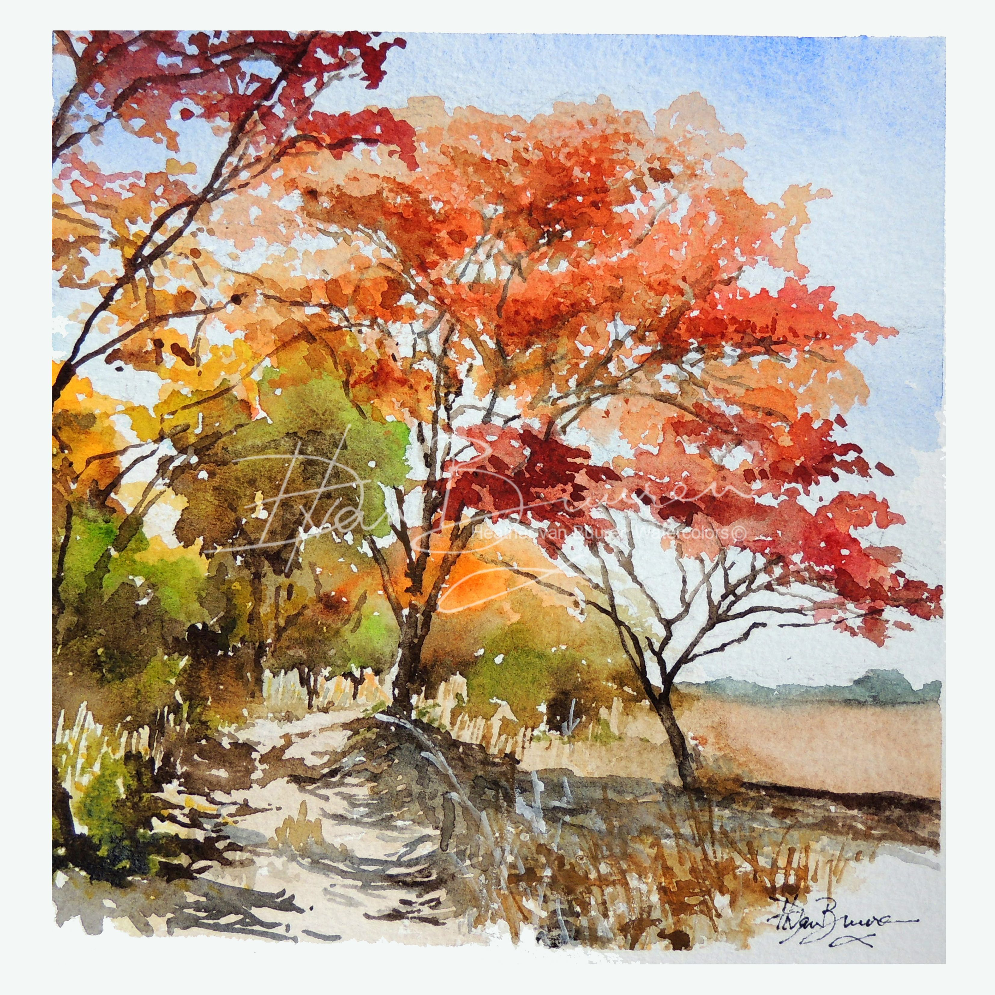 Tree Lined Track Near The Munda With Images Basic Watercolor