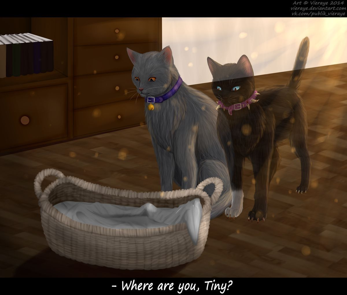 Warriors Come Out And Play Quote: Warrior Cats Scourge