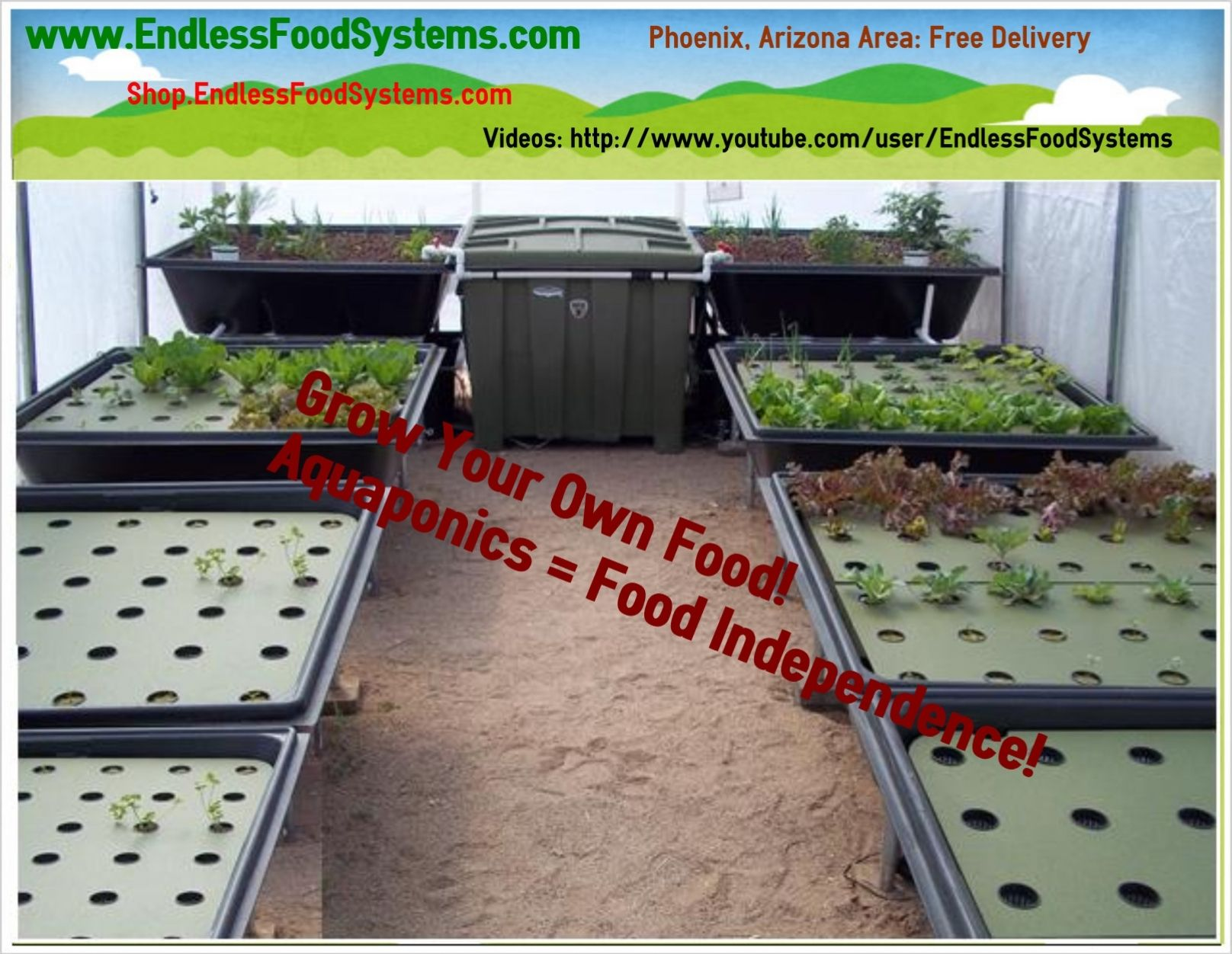 128 sq ft of grow space aquaponics system in phoenix az this