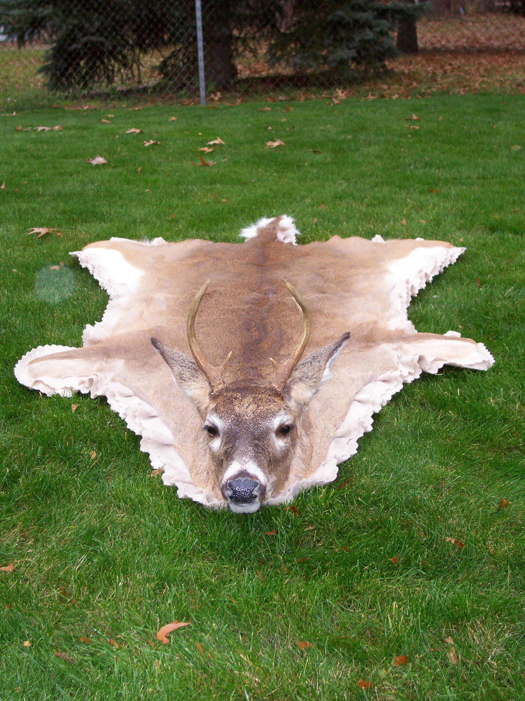 Deer Skin Rug Paul Is Dying For One A Hunting Room