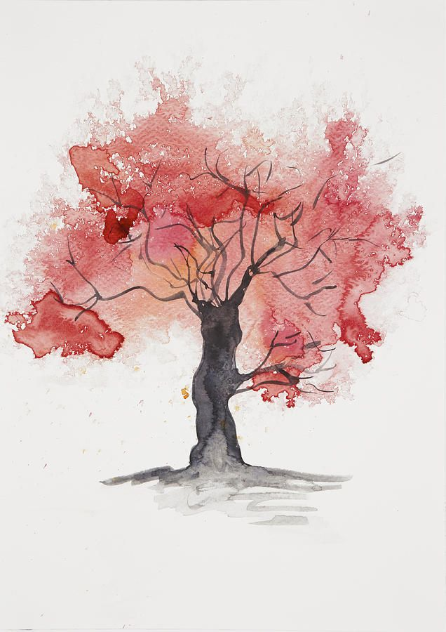 Abstract Watercolour Tree In Red Steve And Jenni Thorp Jpg 636
