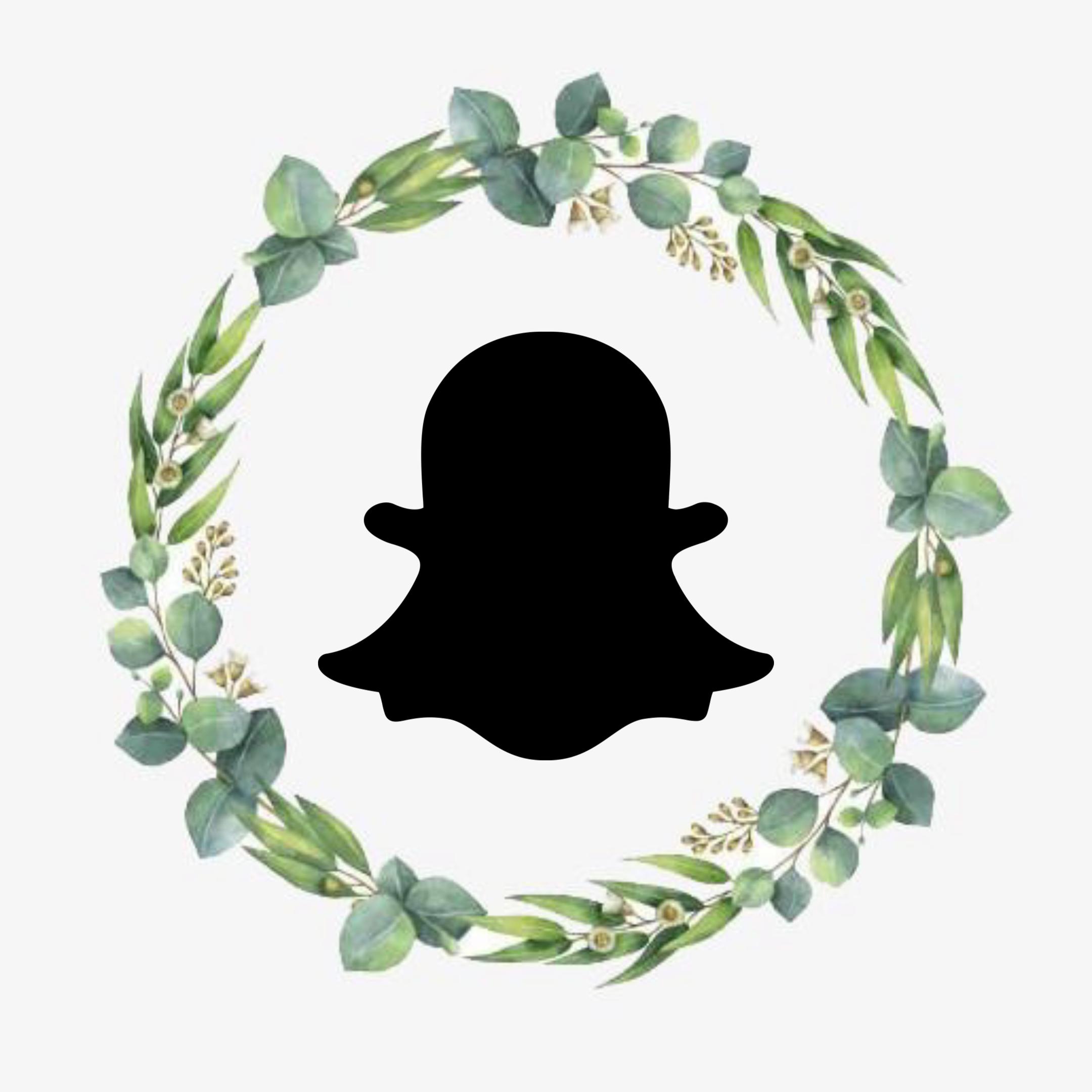 Green Wreath Instagram icons, Instagram, Green wreath
