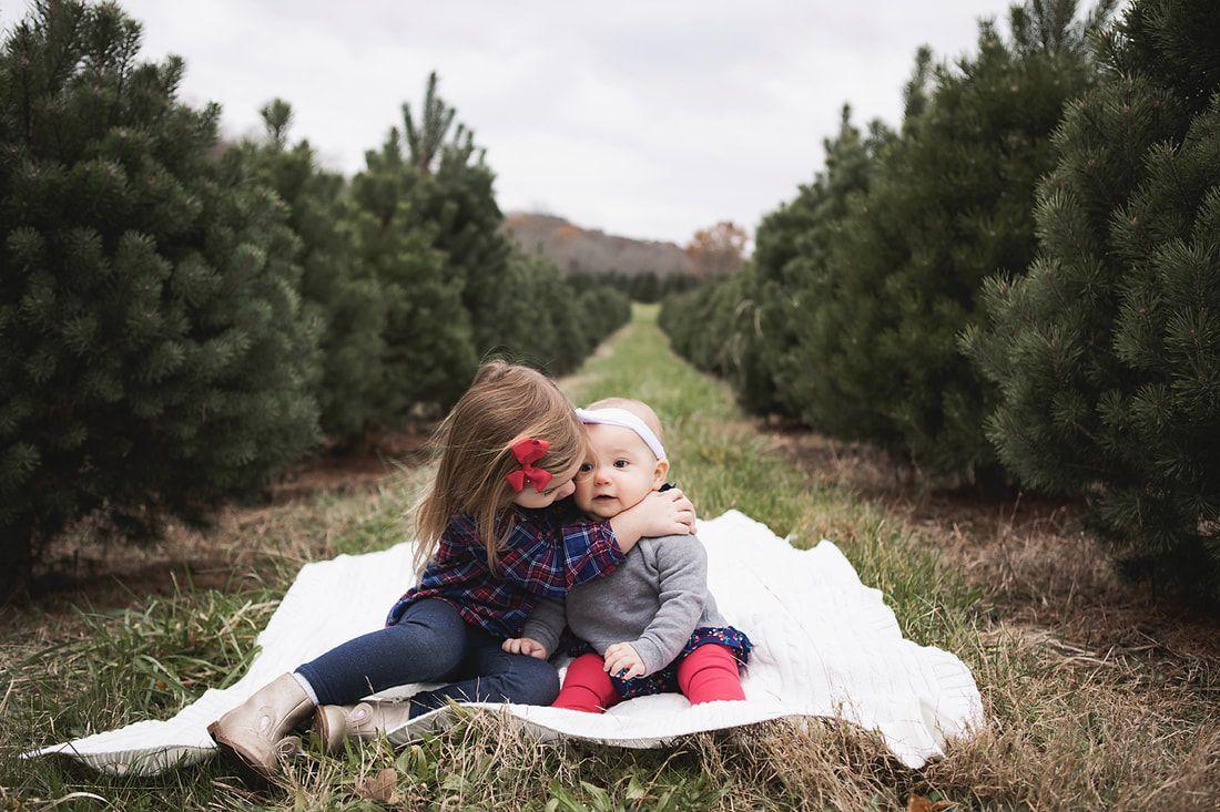 Christmas Session At A Christmas Tree Farm In Cincinnati Ohio    Www.akakeb.com