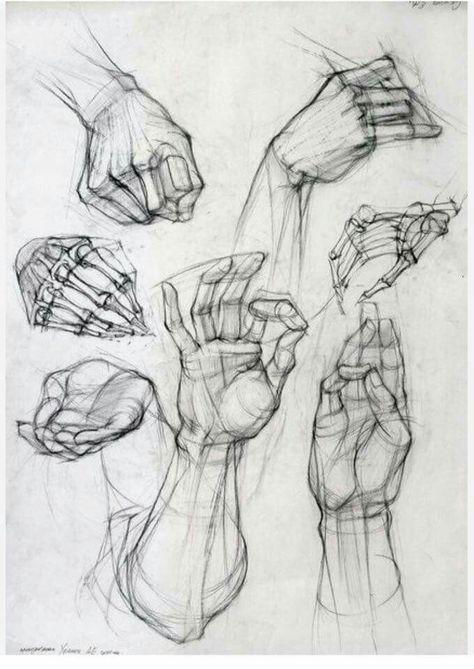 Webmail Ugr 10 Pines Nuevos Para Tu Tablero Anatomy And Figure Drawing Dibujo Anatomia Humana Arte De Anatomia Humana Arte De Anatomia