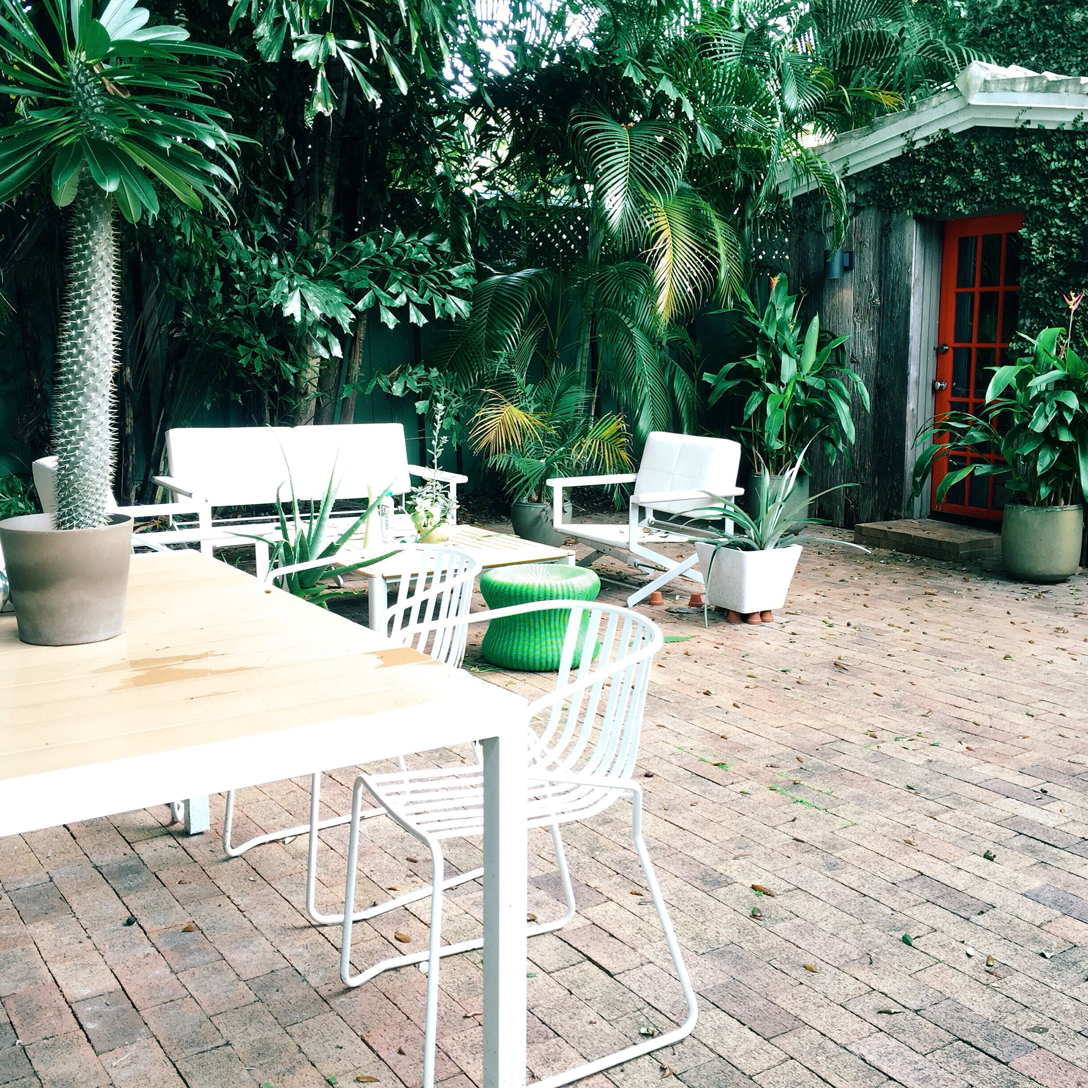 Morningside, Miami. The Most Gorgeous Airbnb Ever