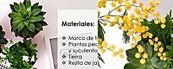 ¡Aprende a hacer tu cuadro vegetal! (y otras ideas DIY con plantas)