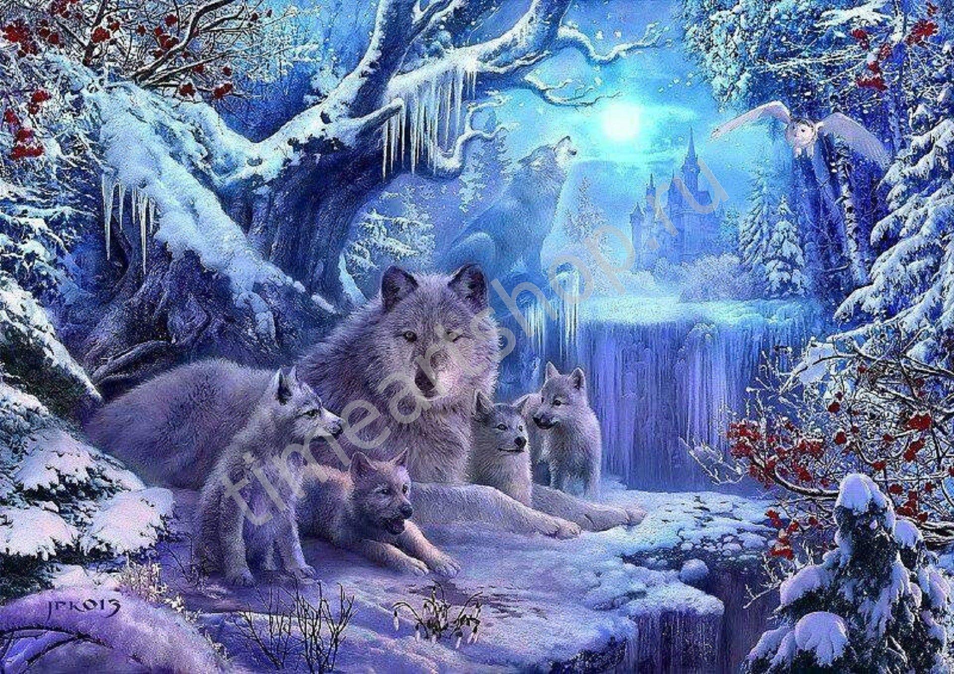 Волчица с волчатами, картина раскраска по номерам своими ...