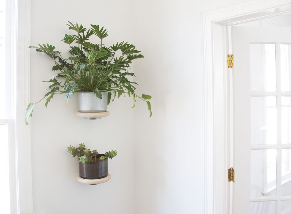 This Minimalist Wall Mounted Planter Appears To Float Against The