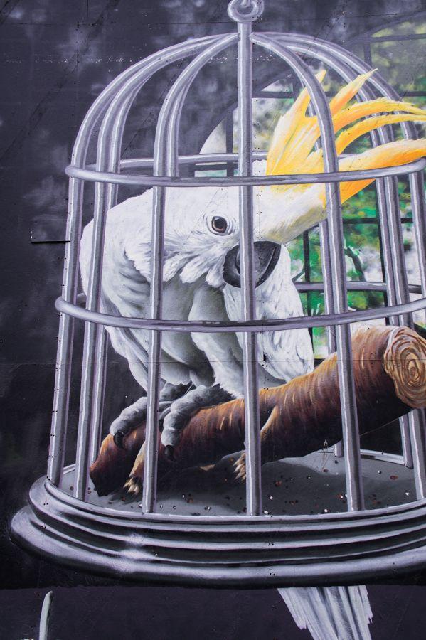 Glasgow Artists and their Best Street Art Murals || The Travel Tester