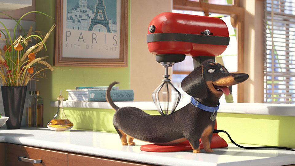 The Secret Life Of Pets In Theaters Summer 2016 Pets Movie