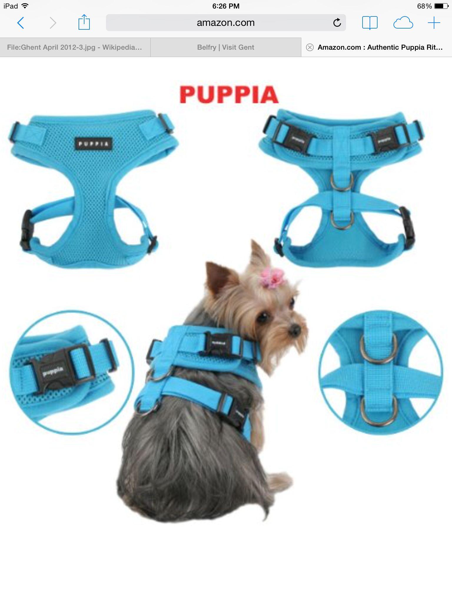 Puppia Sky Blue Multiple Poses Codico Dog Harness Pet