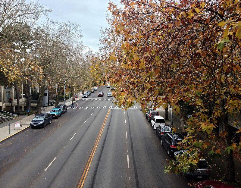 Autumn on Mercer Street