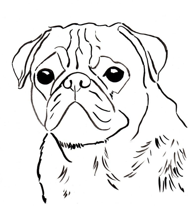 Pug Coloring Pages To Download And Print For Free Puppy Coloring
