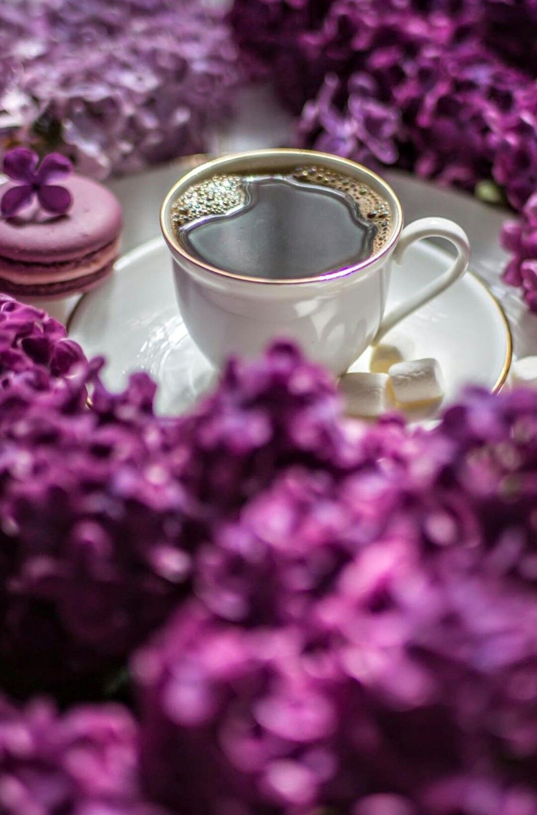 Pin By Lucero Gutierrez On Coffee Coffee Break Coffee Love Coffee Drinks