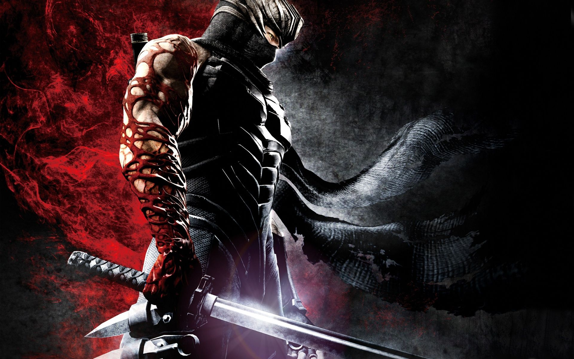 Ryu Hayabusa Ninja Wallpaper Ninja Gaiden Hd Cool Wallpapers