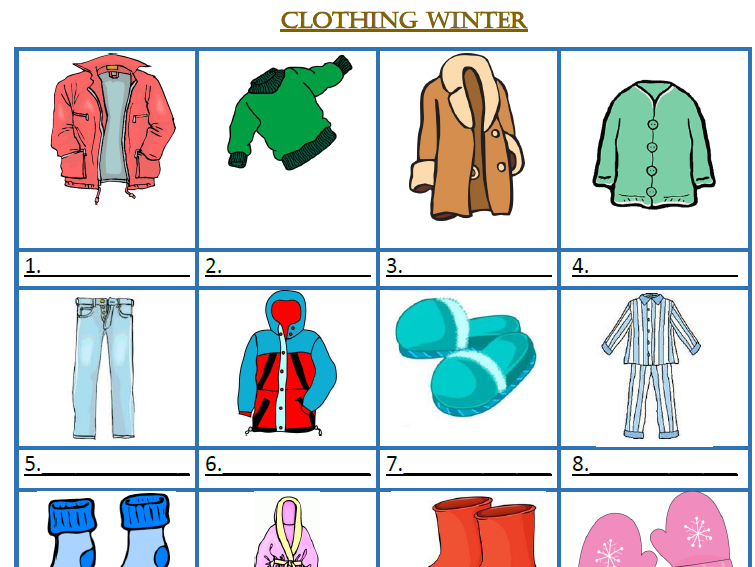 Clothes and Accessories Winter / Summer / Formal