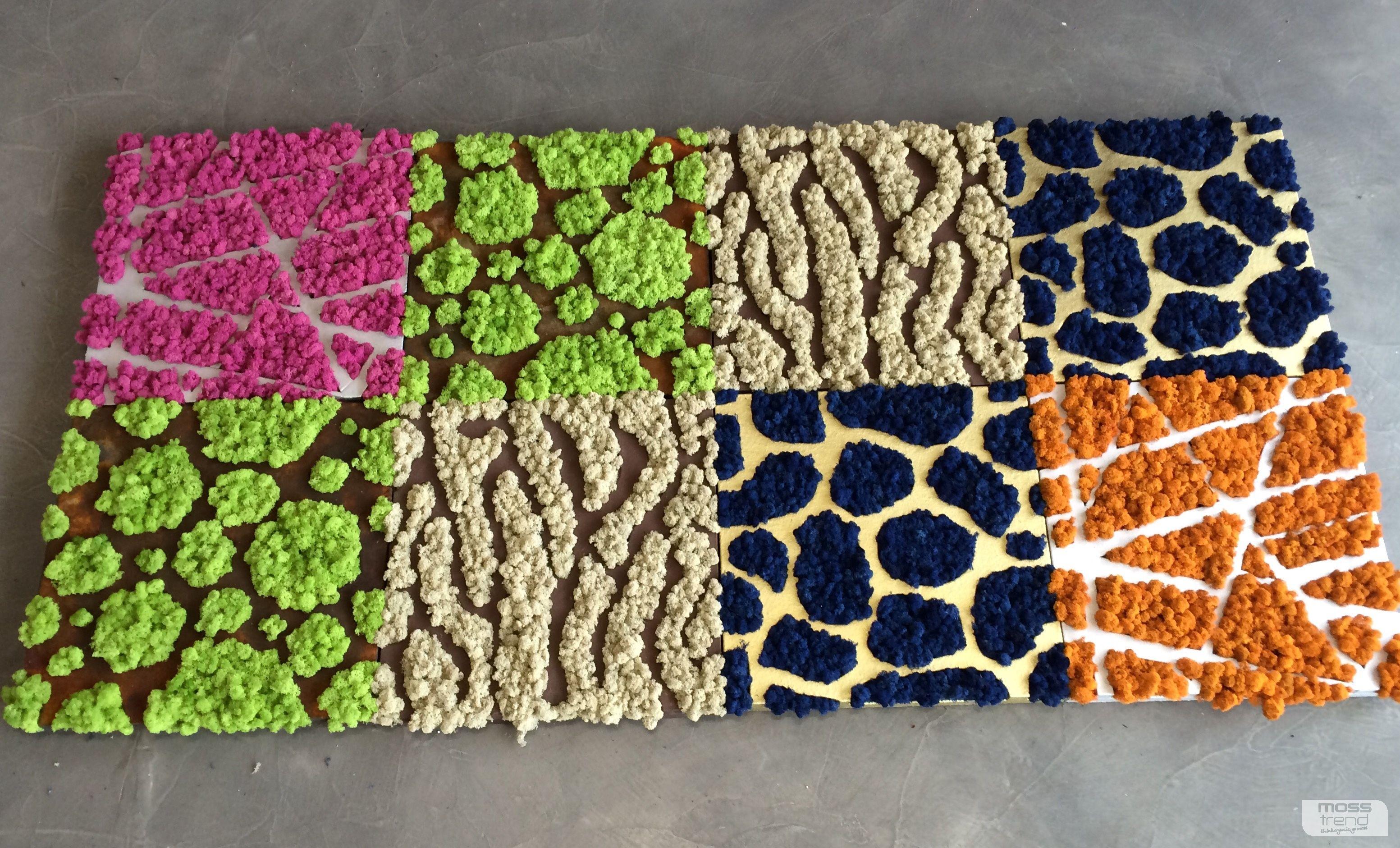 Pareti Verdi Verticali Costi lichene stabilizzato pannelli lichene stabilizzato sfuso