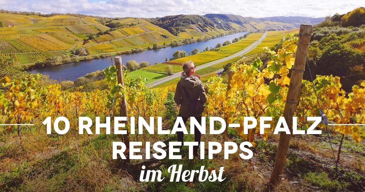 10 Rheinland-Pfalz Reisetipps im Herbst – mit Camping an Mosel und Rhein #travelbugs