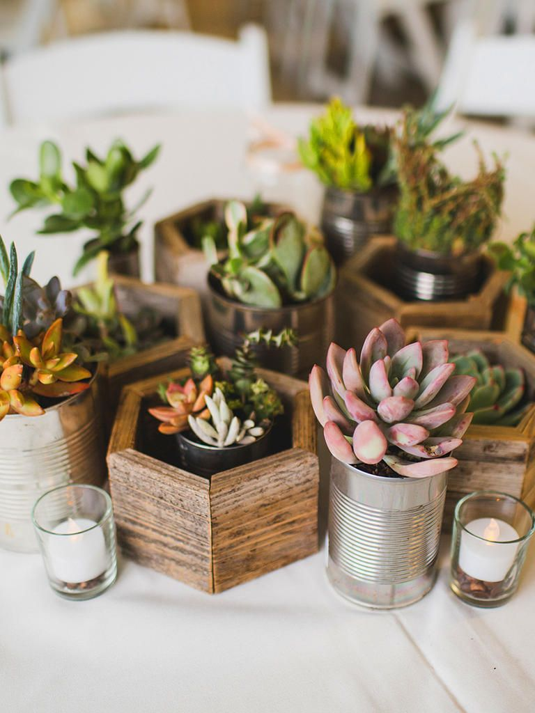 27 Diy Wedding Decorations For Any Skill Level Succulent Wedding