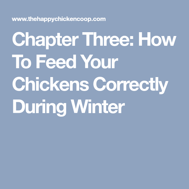 Chapter Three: How To Feed Your Chickens Correctly During