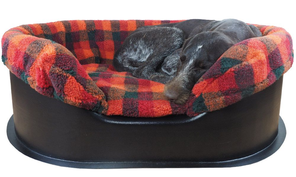The Raised Tuffies Dog Bed Raised Dog Bed and Spare