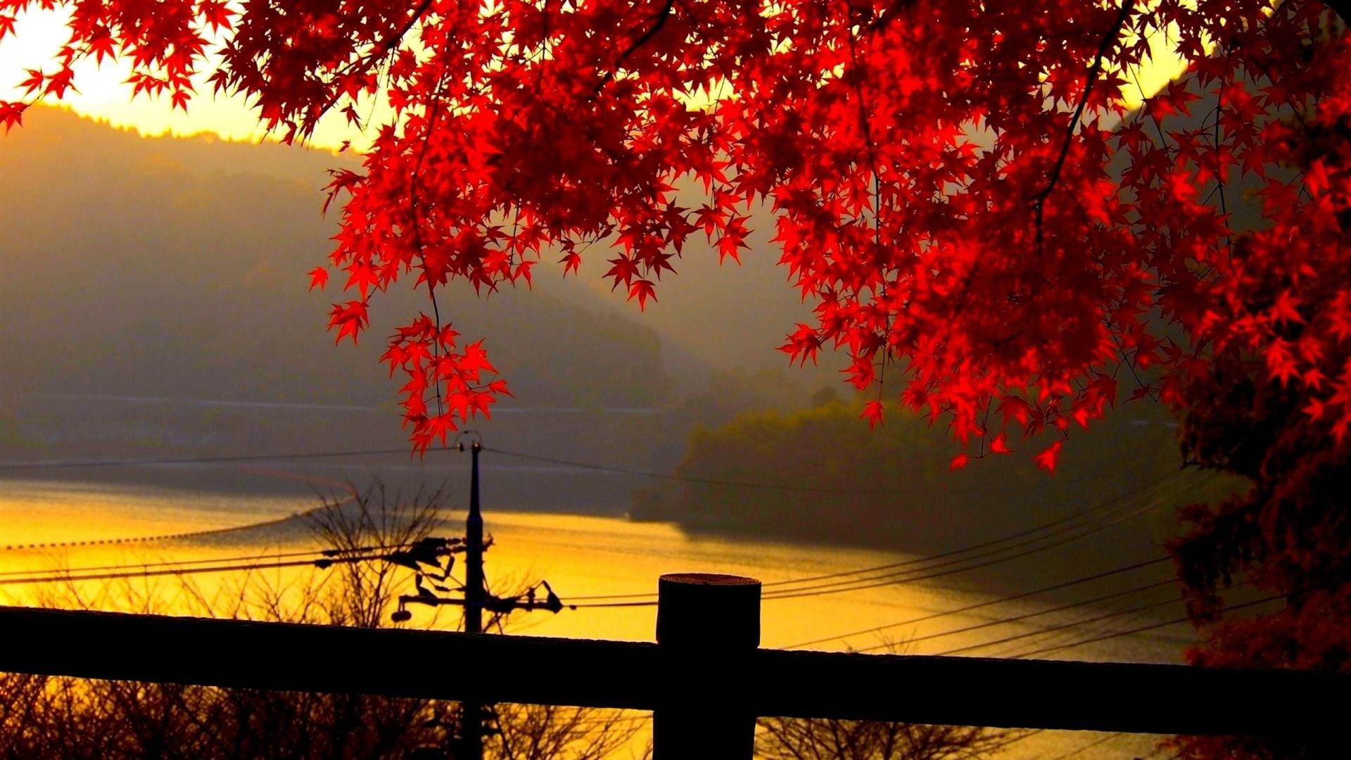 Hd Quality Beautiful Autumn Widescreen Wallpaper 5 Full Size