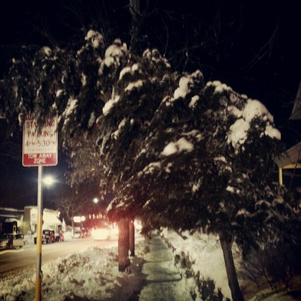Go home tree, you're drunk!