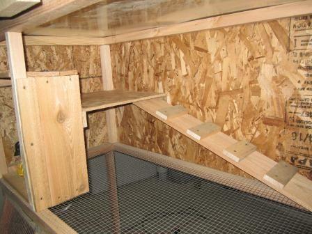Rabbit cage plans rabbit hutch plans how to build a for Rabbit enclosure design