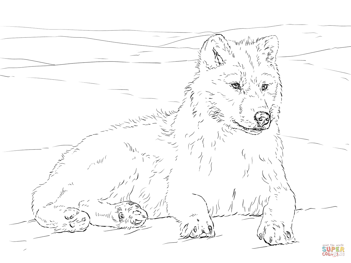Arctic Wolf Coloring Page Free Printable Coloring Pages Puppy Coloring Pages Dog Coloring Page Horse Coloring Pages