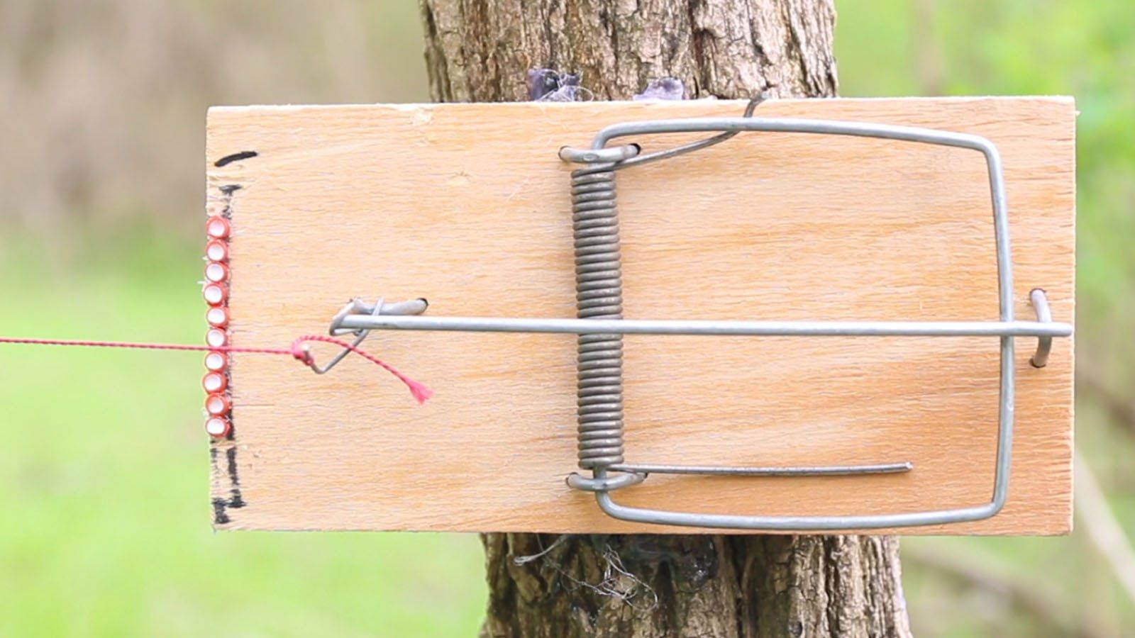 How to Make a Mousetrap Trip Wire Alarm | DIY | Bushcraft ...