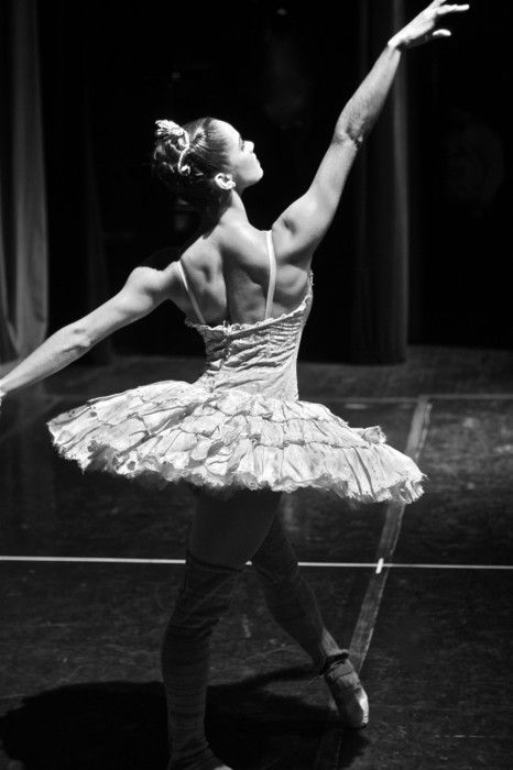 Boston Ballet Don Quixote by Gene Schiavone   American