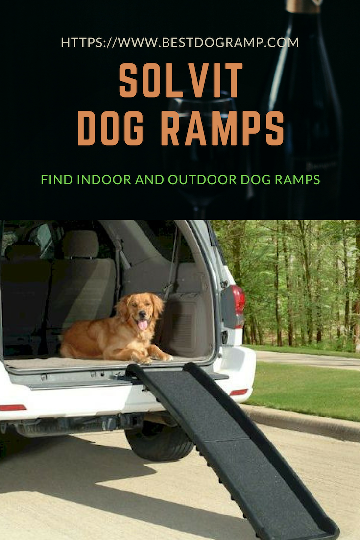 How To Get A Dog Used To A Ramp