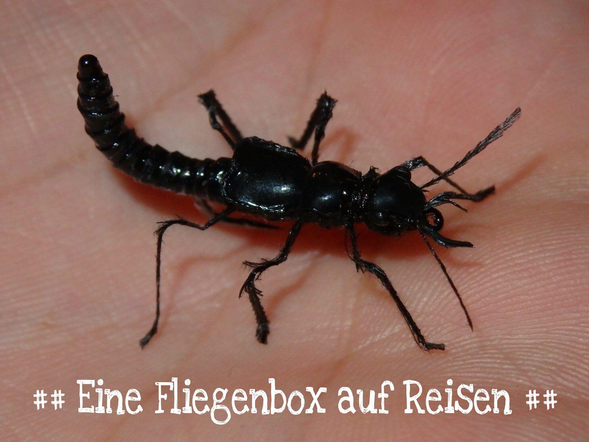 Der schwarze Moderkäfer. By Heinz Zöldi