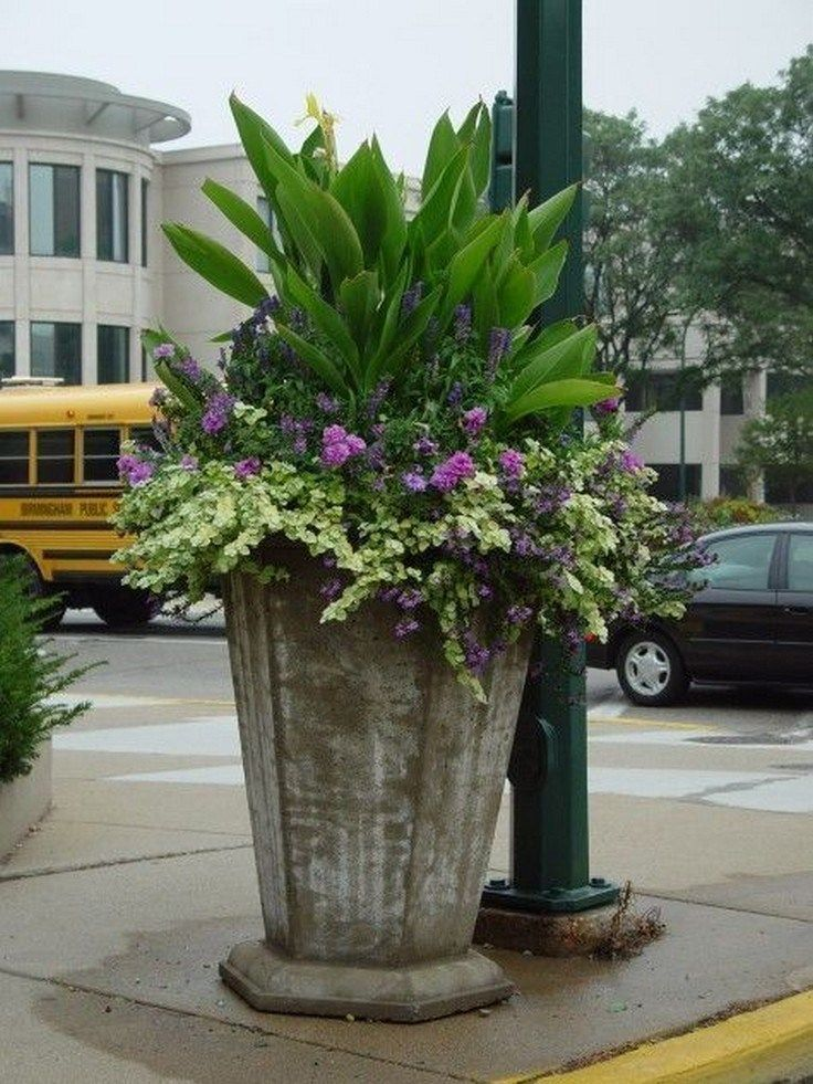 63 simple container garden flowers ideas 23 is part of Container flowers, Full sun container plants, Container garden design, Container gardening, Container plants, Container gardening flowers - 63 simple container garden flowers ideas 23