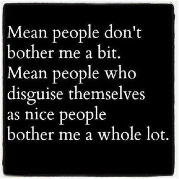 Mean People Disguised Mean People Quotes Words Life Quotes