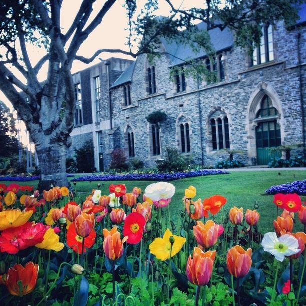 Christchurch Central, Christchurch, New Zealand — by