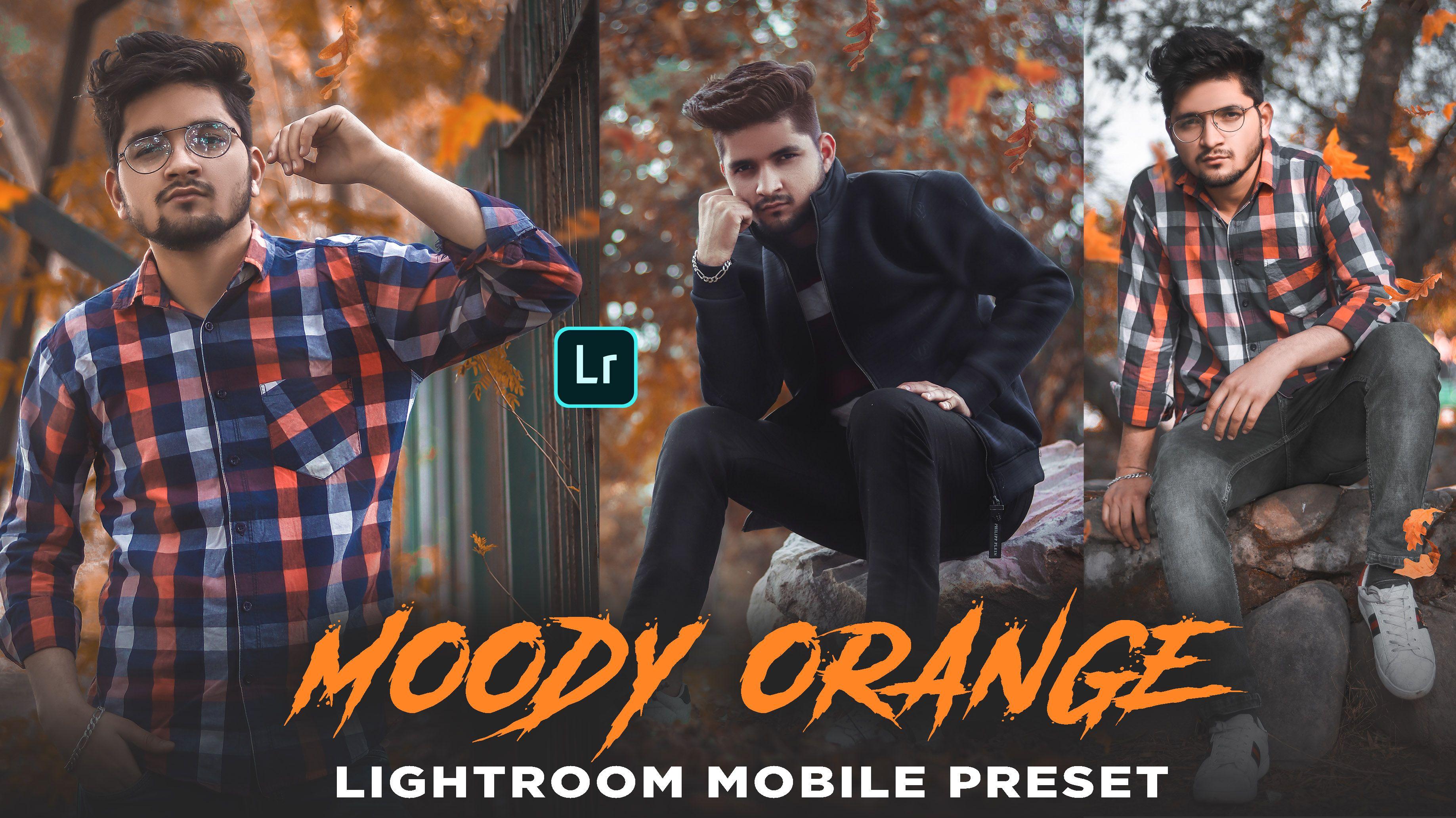free lightroom mobile presets dng file