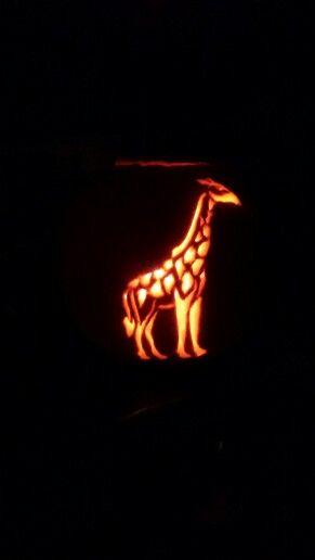 pumpkin template giraffe  Giraffe pumpkin carving in 7 | Pumkin carving, Pumpkin ...