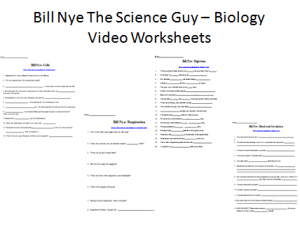 Bill Nye Digestion Worksheet - worksheet