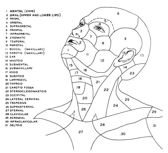 Standard Terms for Diagnoses, Anatomical Locations, and