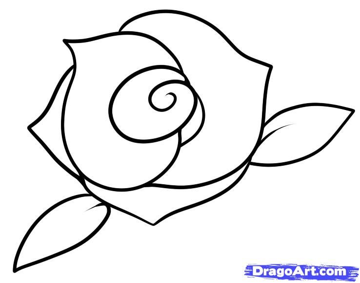 how to draw a rose - 735×577