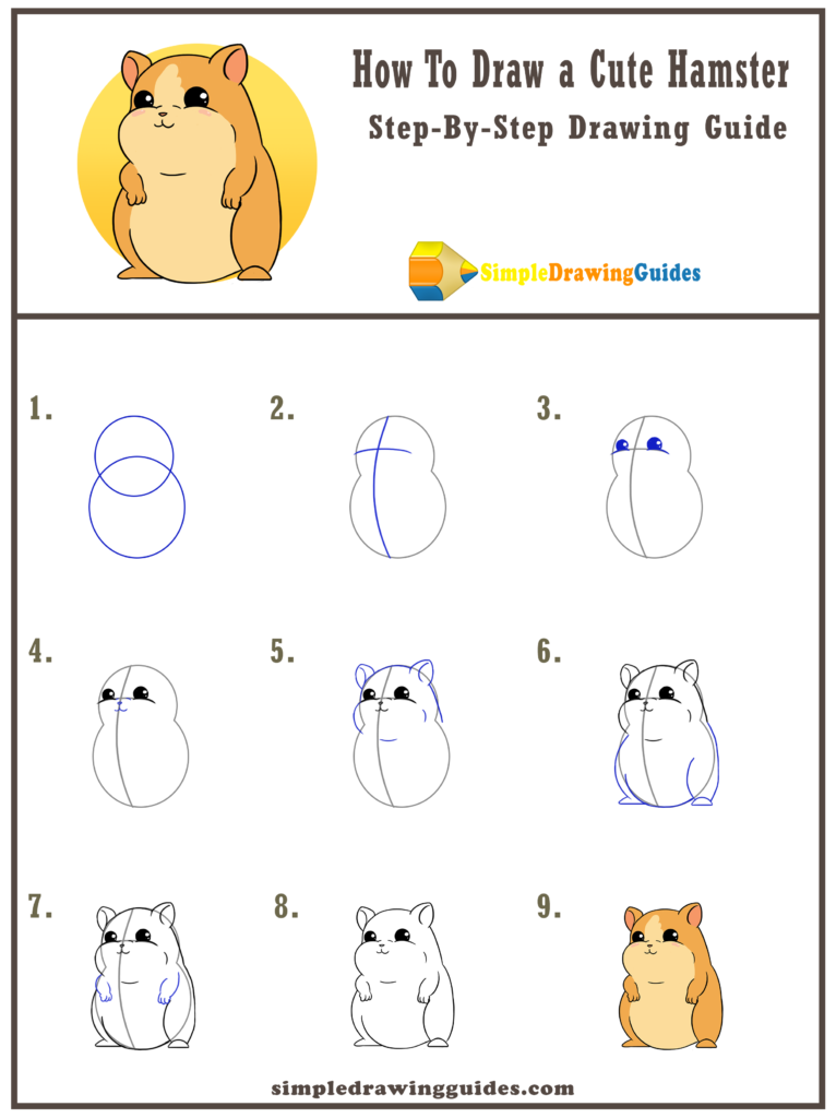 How To Draw A Cute Hamster Cute Hamsters Pets Drawing Cute Drawings