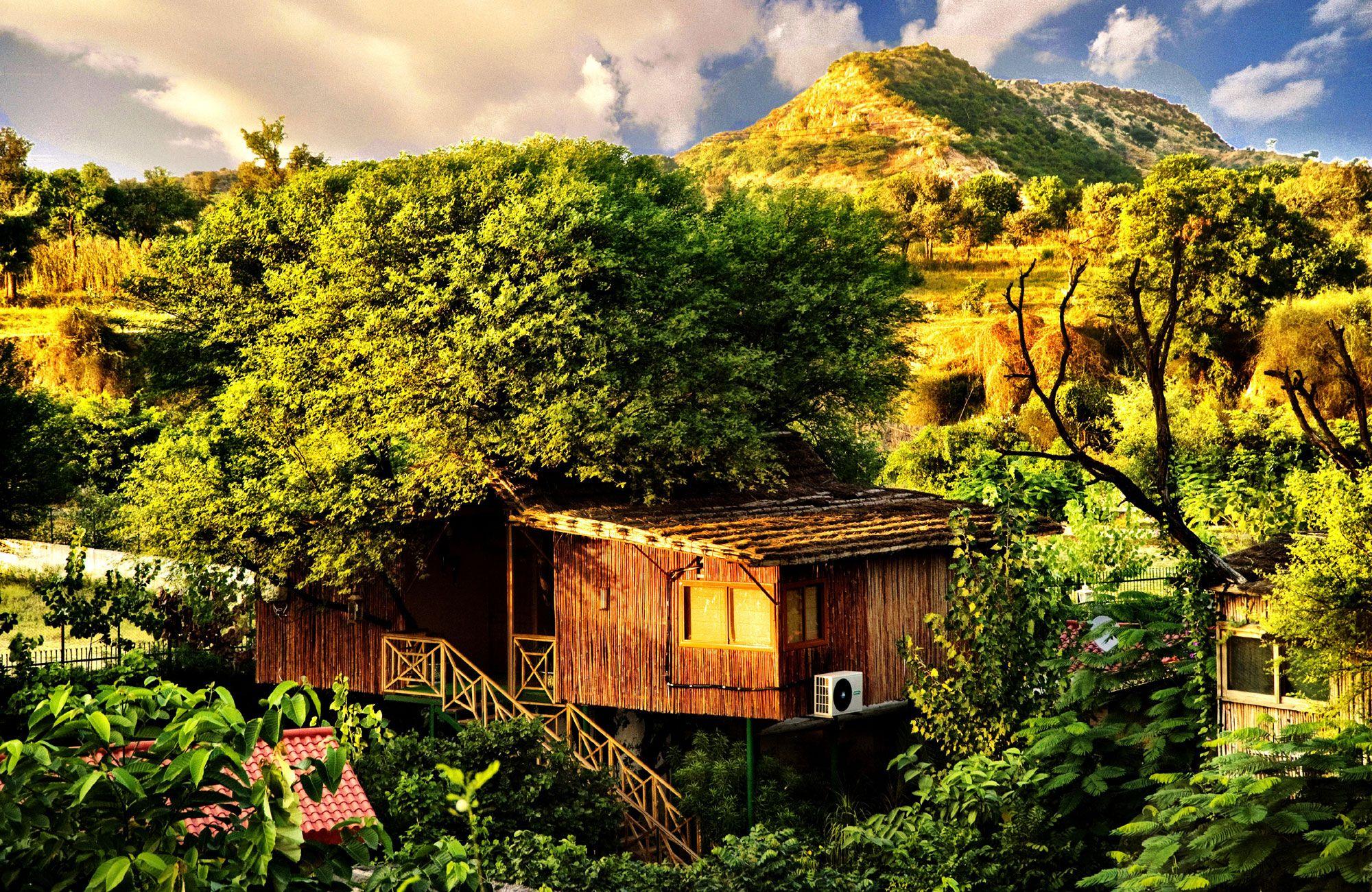 The Treehouse Resort Jaipur, India