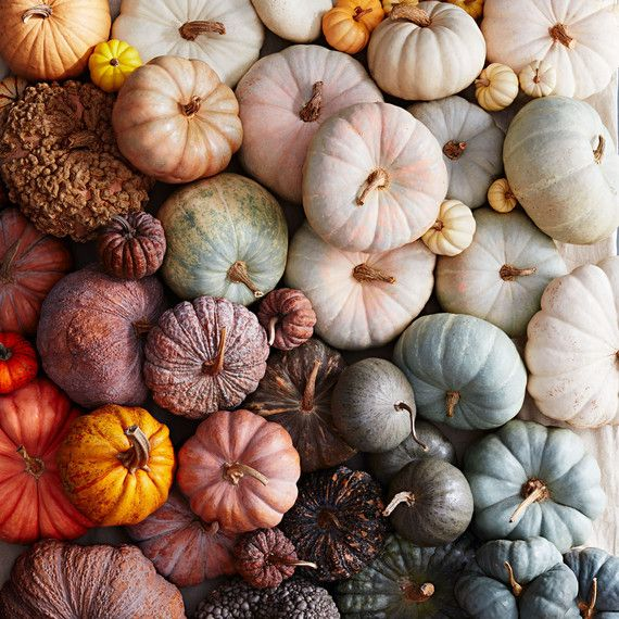 Transform it into a grinning jack-o-lantern. Or adorable woodland animals. Or googly-eyed undead pumpkins. There are so many techniques to try! #marthastewart #falltravel #fallideas #fallfoliage