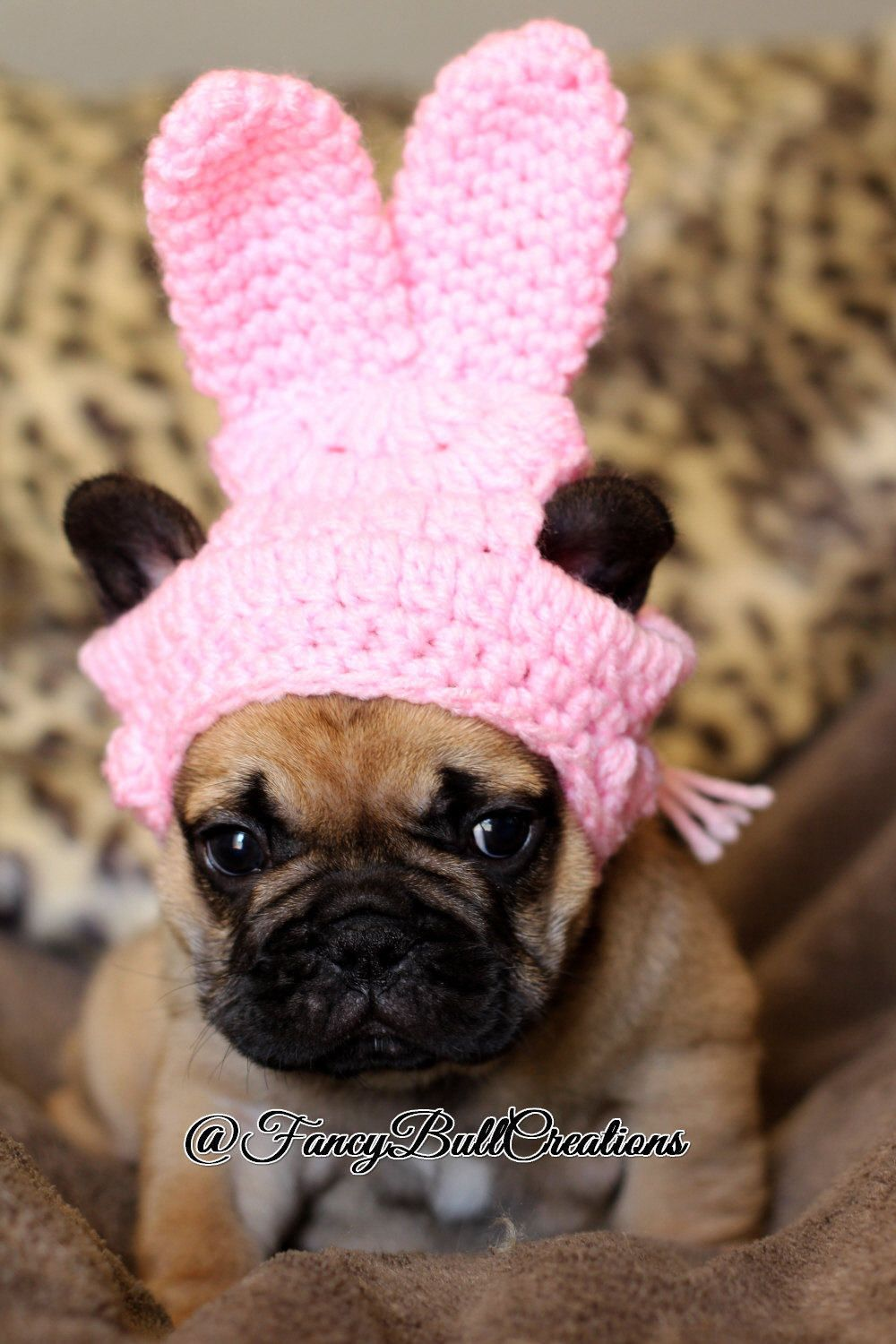 f721aa2af82 French Bulldog Clothe Puppy Easter Bunny Rabbit Hat Beanie pom pom hat dog  clothes toque gorro de ganchillo para mascota - photo shoot prop by ...