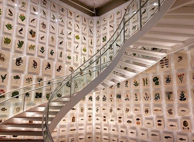Stair - Escada - Centro Itaú Cultural - Avenida Paulista - São Paulo - Brasil
