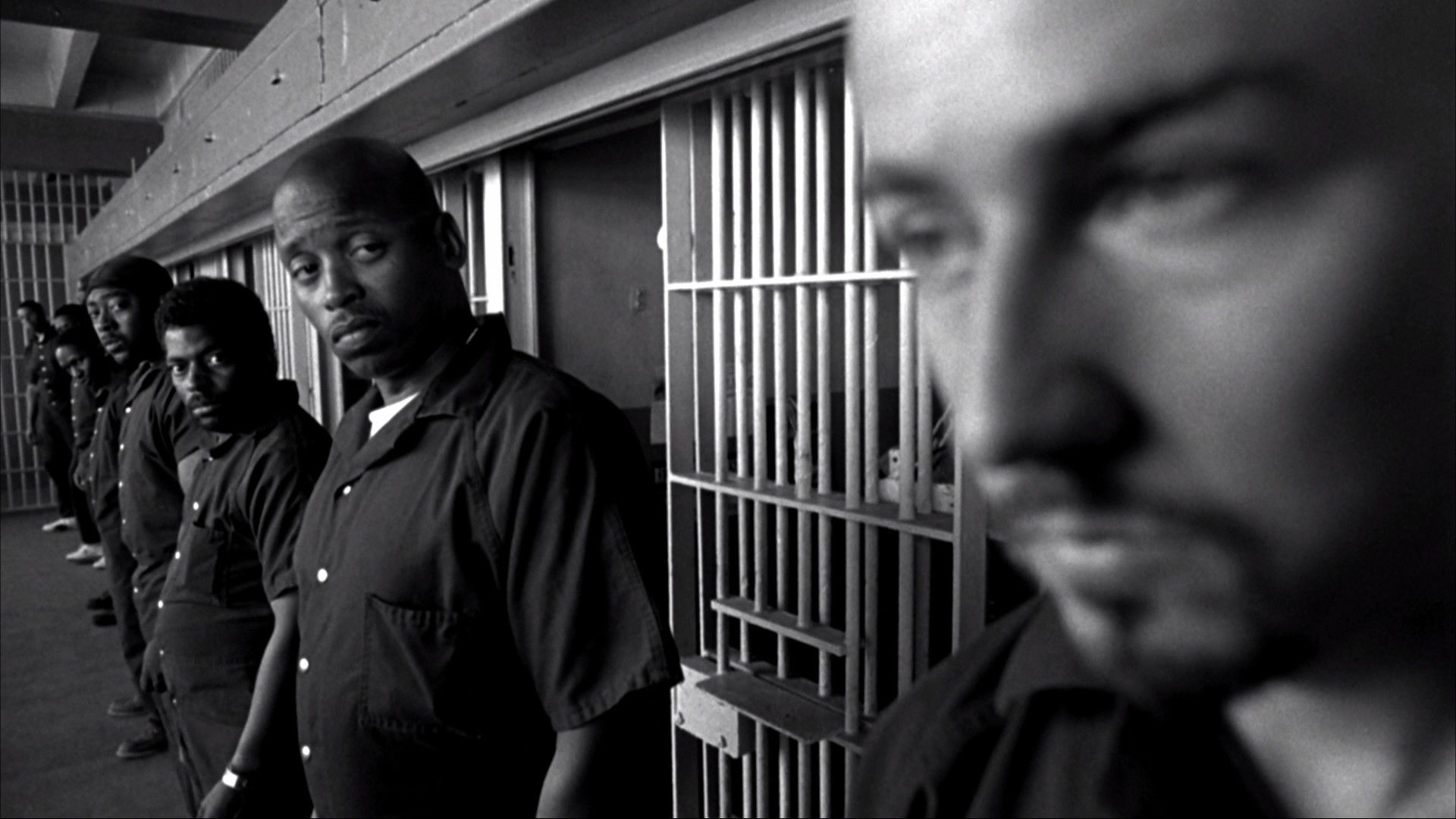 Could some one tell me where to find danny`s vinyard (from american history x) compleate assay?