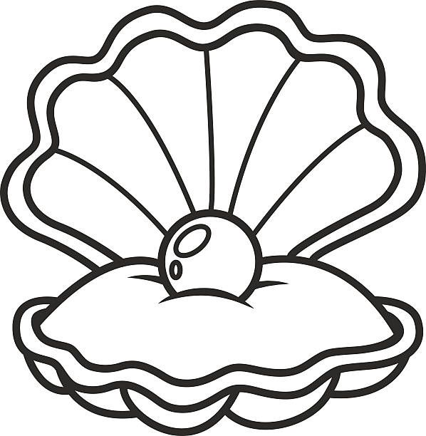 Image Result For Clam Shell Shell Drawing Seashells Cartoon