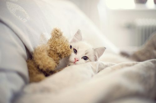 tuck me in?